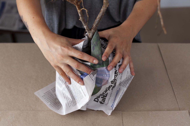 Imagem: Passo 3: Cimento seco, é hora de pintar o galho! Proteja a leiteira e o espaço a ser trabalhado com jornal para evitar que a tinta suje a peça e o local. Foto: Raphael Günther/Bespoke Content.