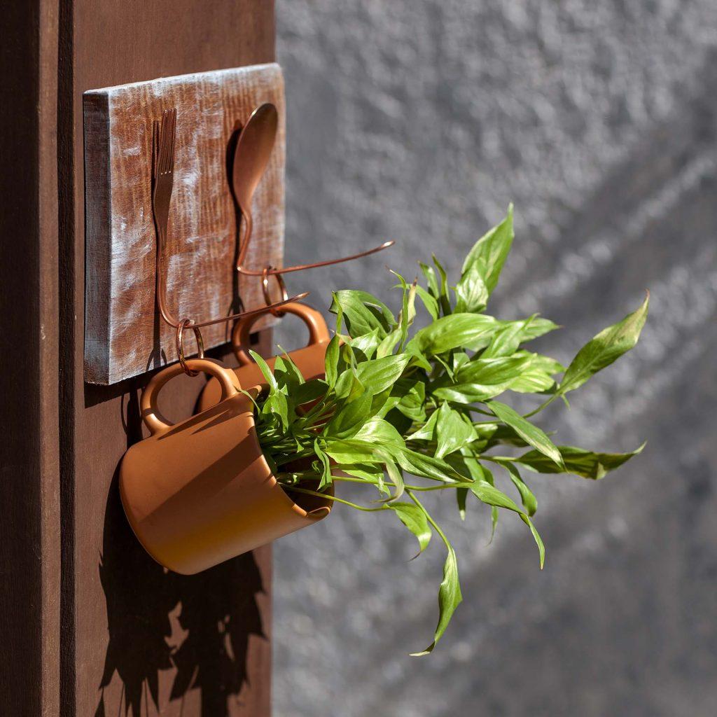 Imagem: Canecas também podem se transformar em pequenas hortas. Foto: Raphael Günther/Bespoke Content.