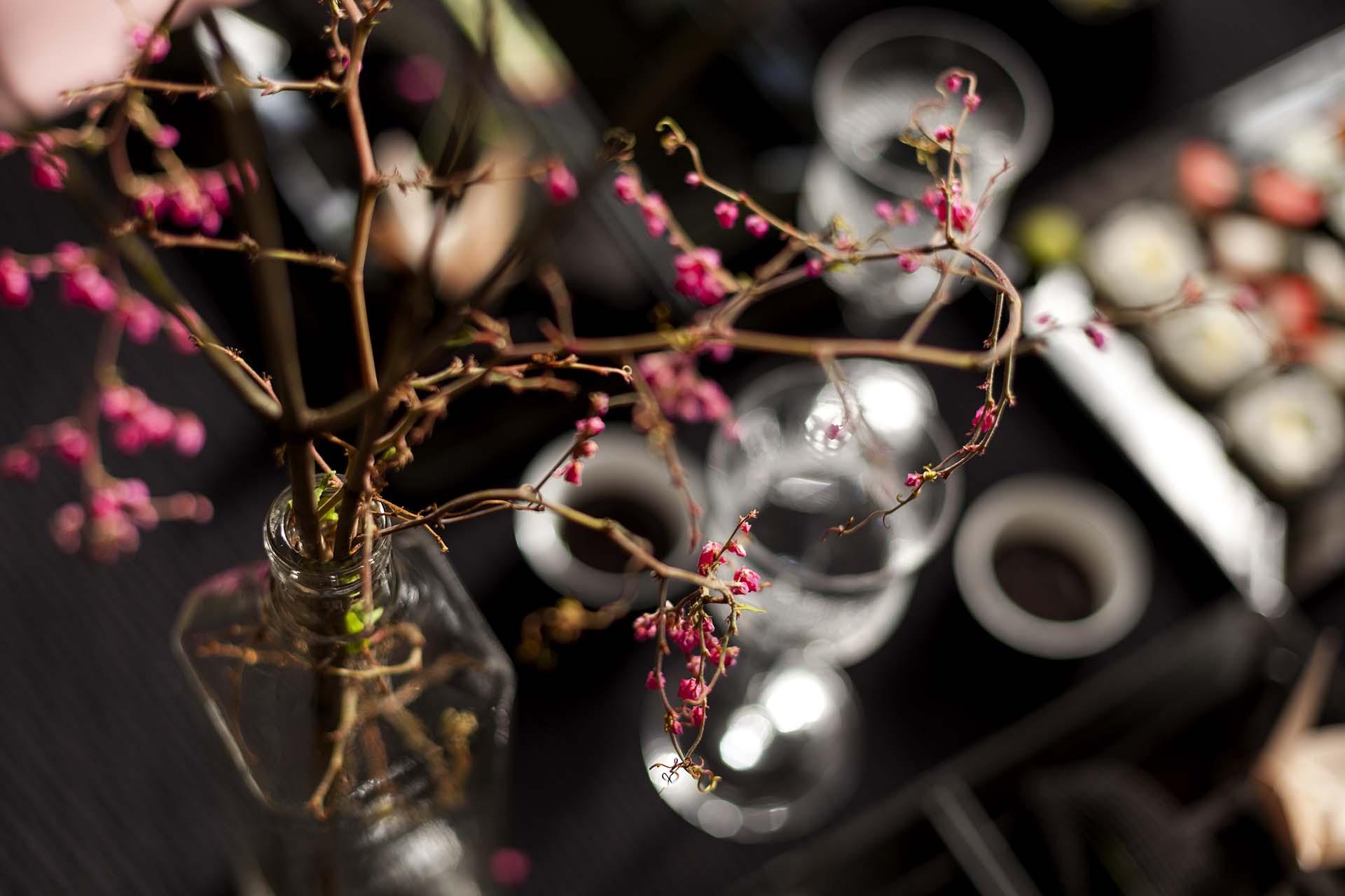 Imagem: Garrafinhas de vidro transparente são excelentes para abrigar flores na decoração. As flores de cerejeira completam a delicadeza da cena. Foto: Raphael Günther/Bespoke Content.
