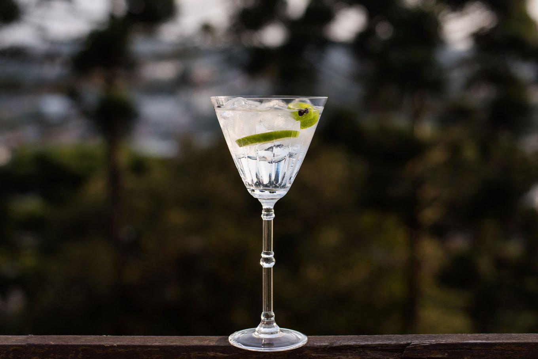 Imagem: Gin com tônica, limão, gelo e alguns grãos de zimbro. A taça é a de água da coleção Venezia Arlequim, da Oxford Crystal. Foto: Karla Rudnick.