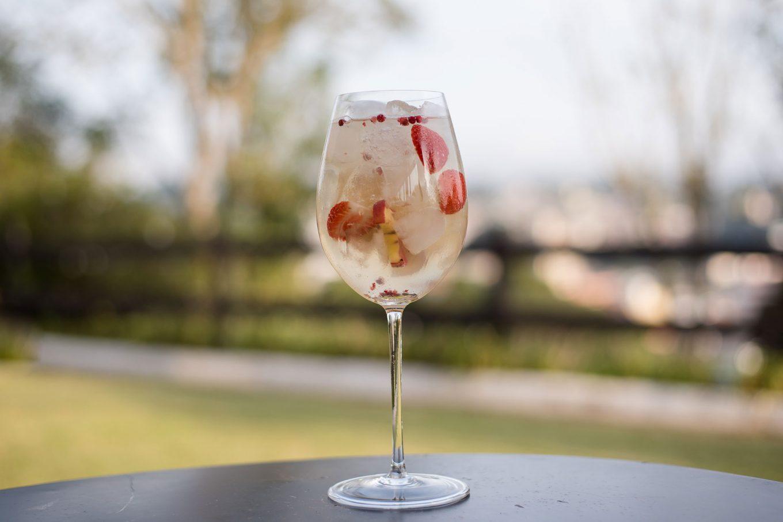Imagem: A capacidade da taça Chardonnay, da Oxford Crystal, é perfeita para esse drink Gin tônica fruits, que leva muito gelo e pedaços de frutas. Foto: Karla Rudnick.