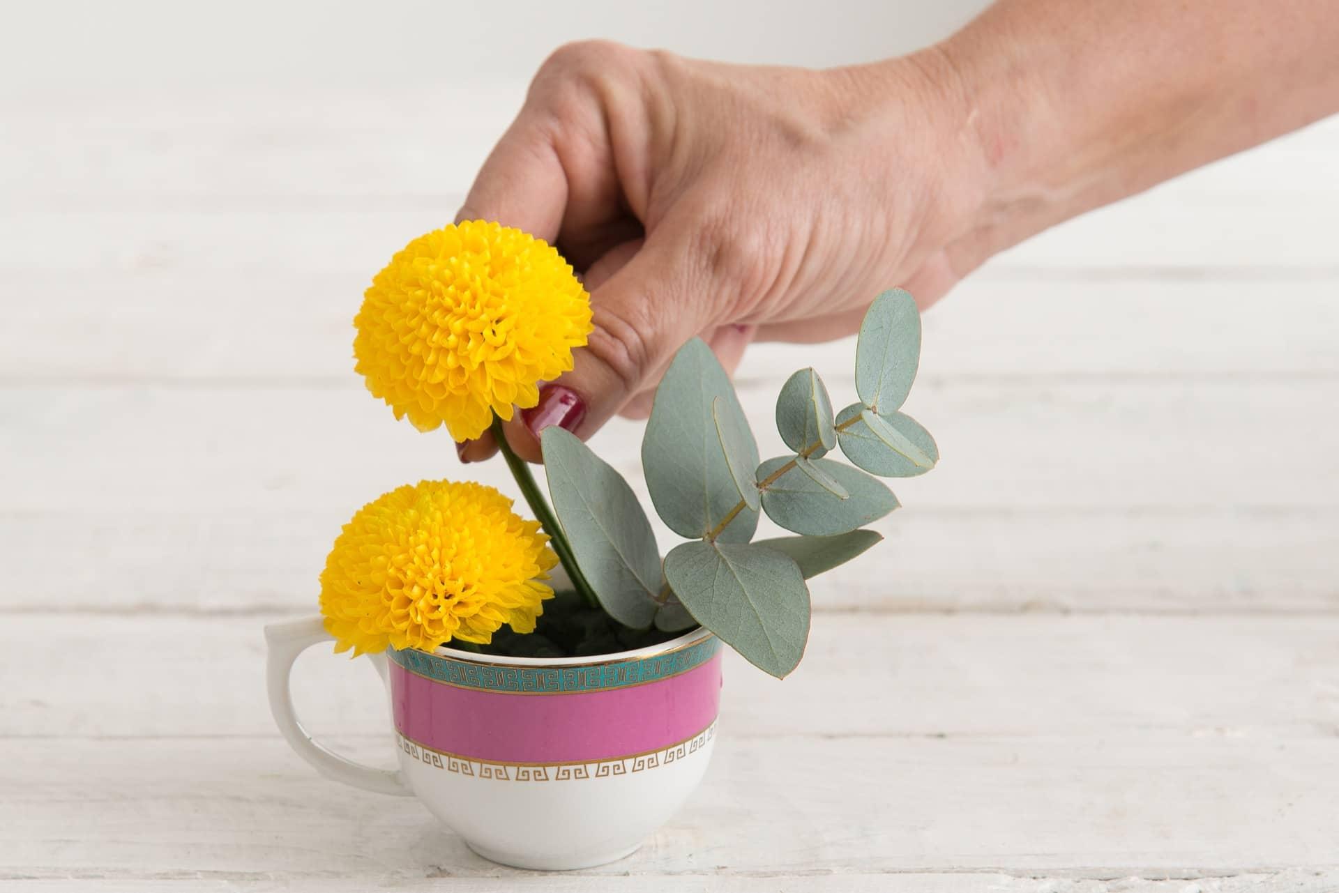 Imagem: Passo 7: Posicione as flores dentro das xícaras, de modo a formar os arranjos. Preencha bem o espaço, para cobrir a espuma floral. Xícara de chá da linha Flamingo Joia Brasileira, da Oxford. Foto: Cacá Bratke.
