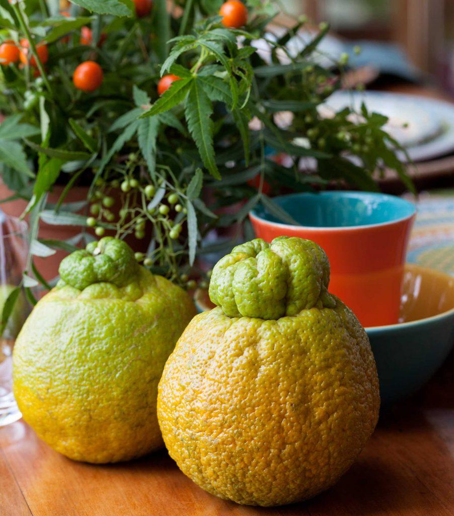 Frutas também são muito bem-vindas à mesa e não somente para a refeição, mas também como elementos decorativos. Foto: Julia Ribeiro.