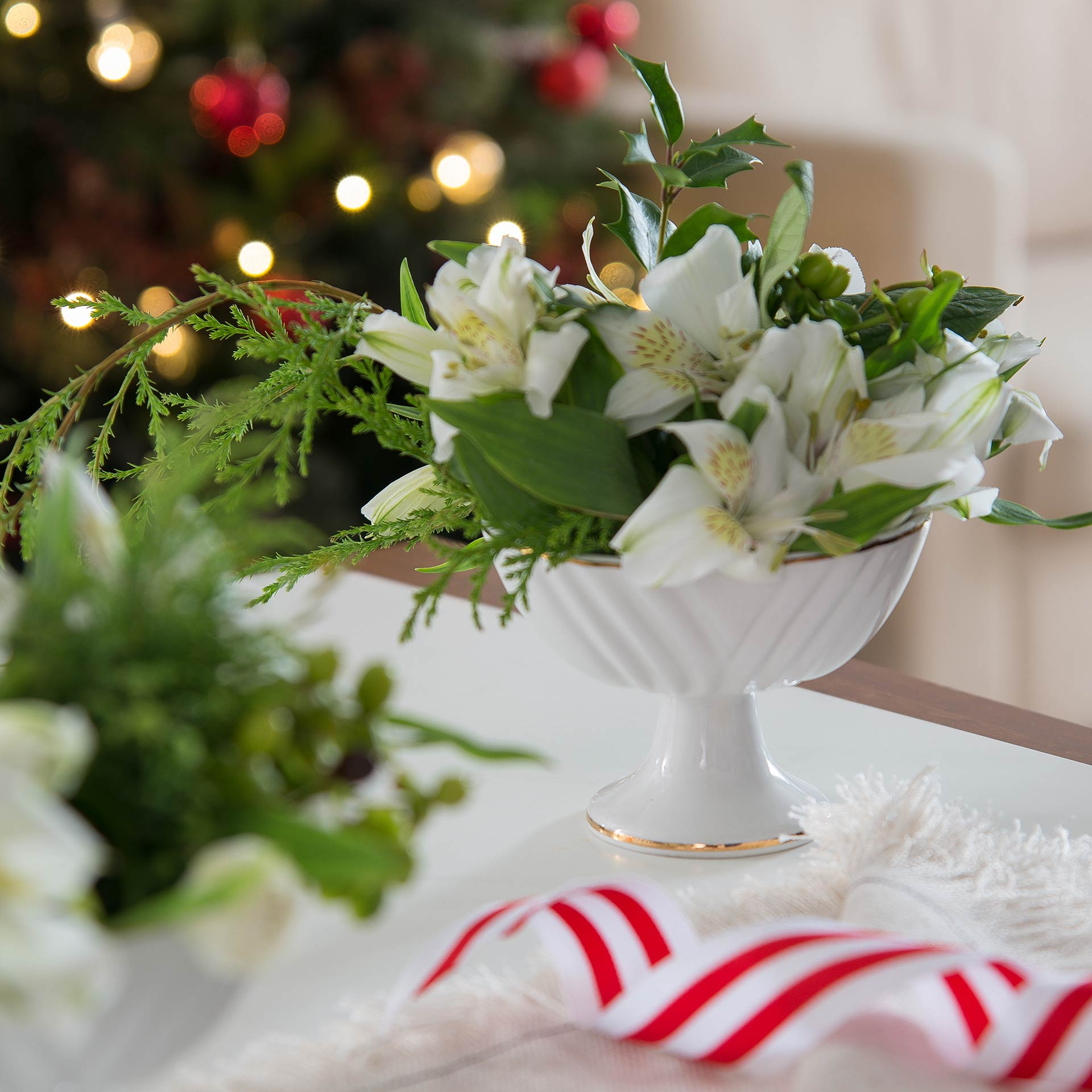 Imagem: Lindo e delicado arranjo de Natal feito pela Claudia Pixu numa taça de sobremesa de porcelana. Foto: Cacá Bratke.