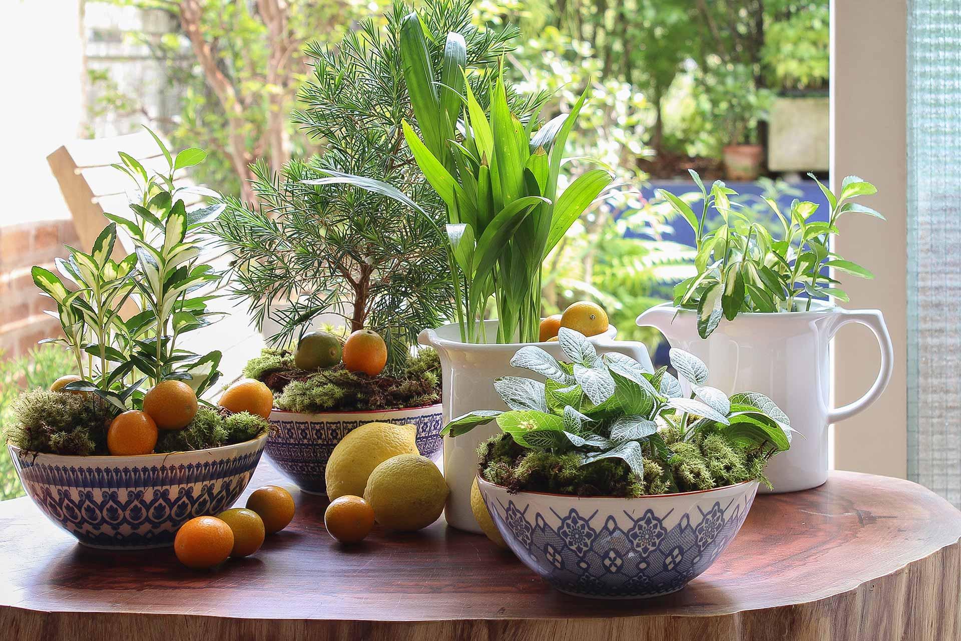 Imagem: Dá pra apostar em bowls estampados, lisos ou até brancos. Tudo depende do seu estilo e da sua composição de mesa posta. Foto: Cacá Bratke.
