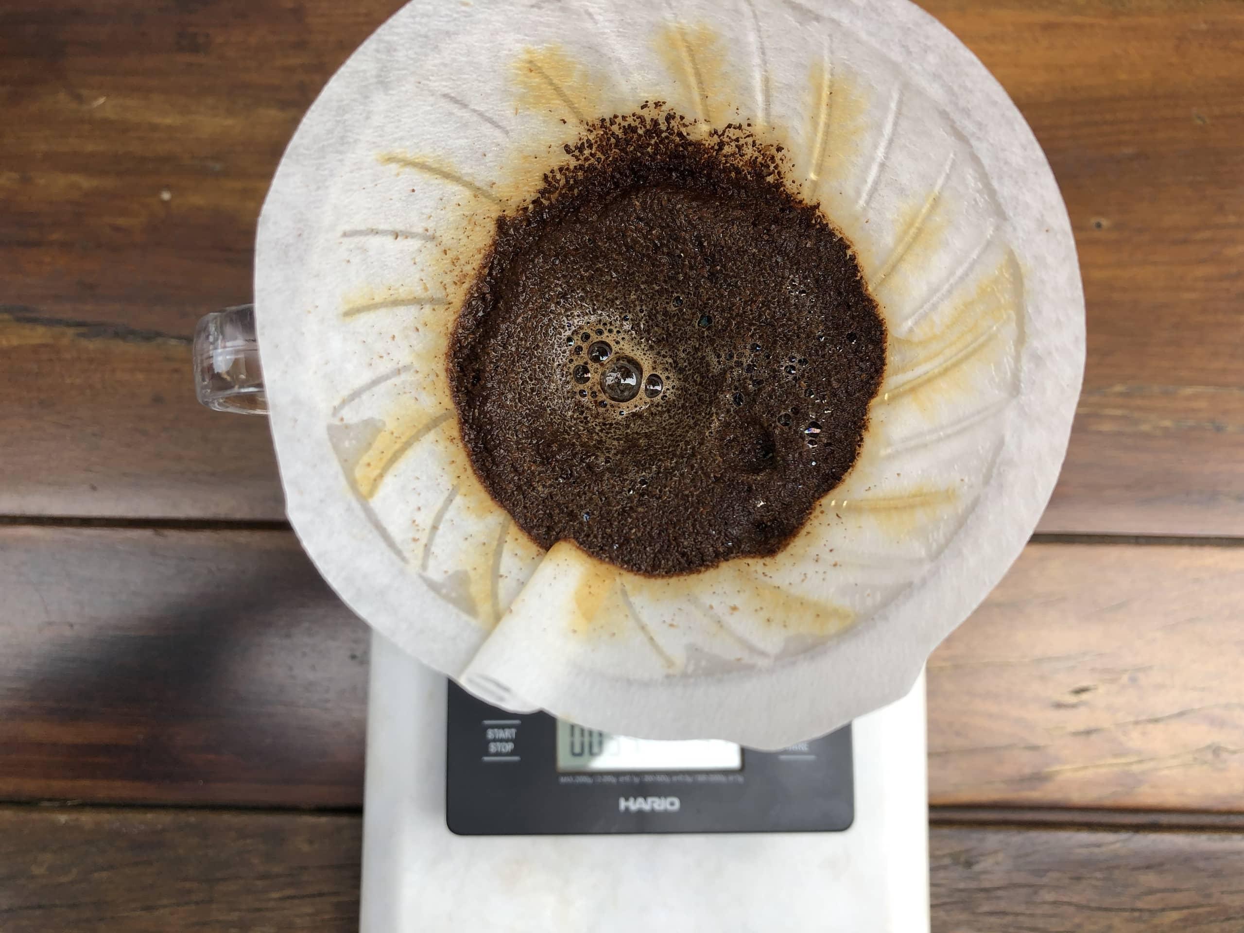 Imagem: Café especial filtrado na Hario V60. O ideal é que essa segunda queda de água seja feita com movimentos circulares, quase até a boca do filtro, para criar uma parede de pó de café no filtro. Foto: Arquiteca Projetos Afetivos.