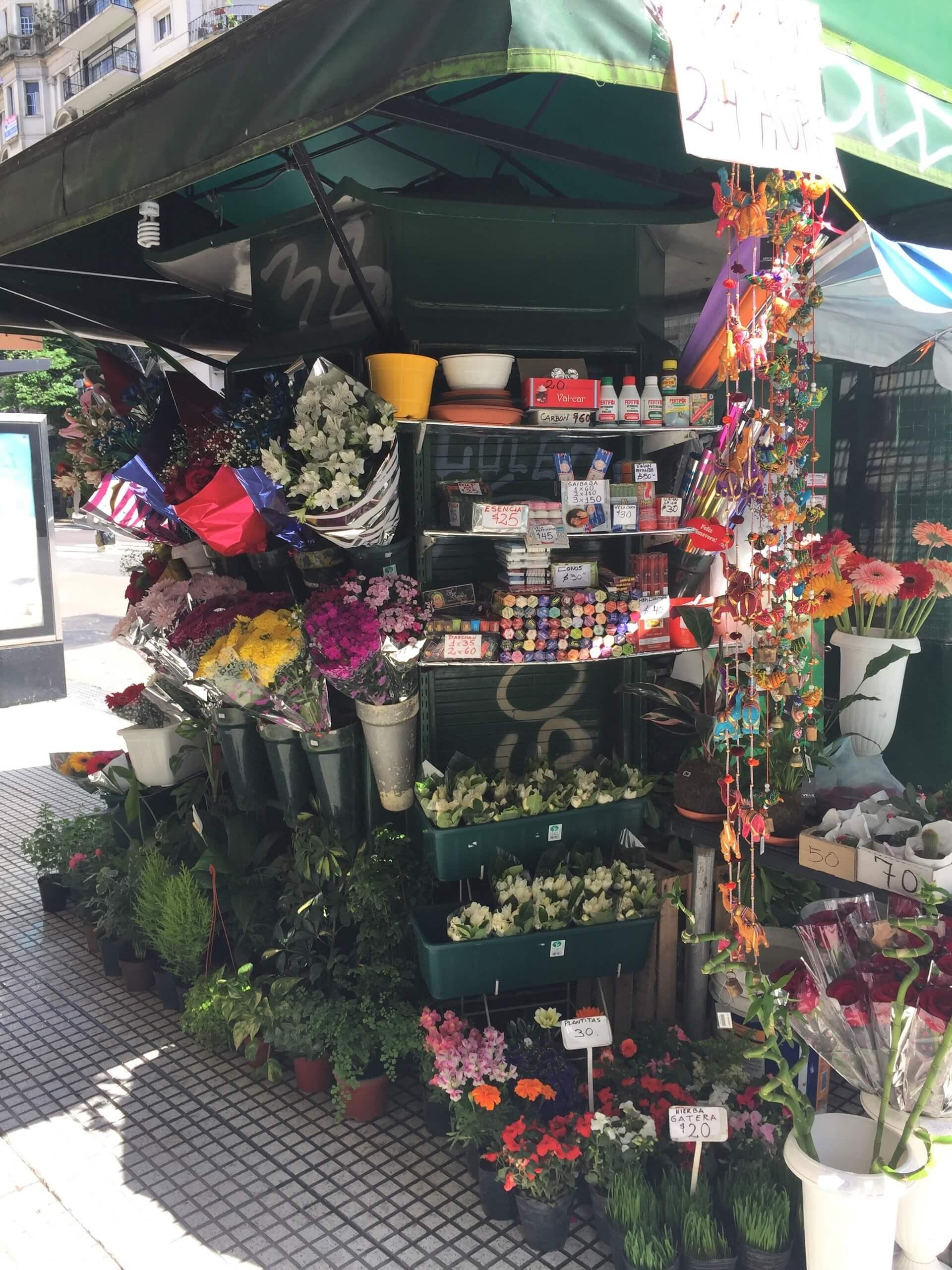 Se estiver pela cidade e gostar de flores, fique sempre atento às bancas para conhecer, admirar e comprar algumas espécies que não temos no Brasil. Foto: Fabíola Cordeiro.