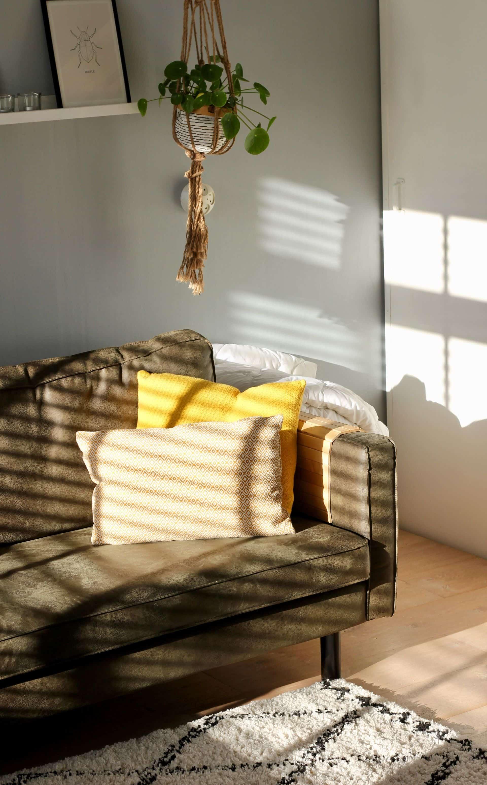 Almofadas podem renovar o ambiente e trazer um ar de aconchego e conforto.